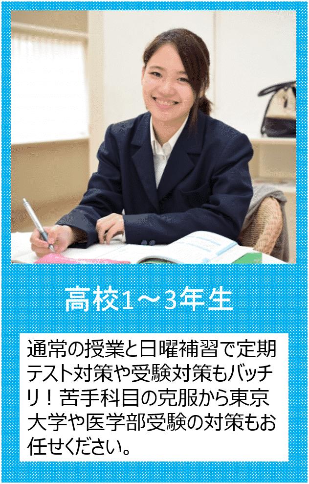 高校1~3年生の個別指導の個別指導をご希望の方はこちらをクリックしてください。通常の授業と日曜補習で定期テスト対策や受験対策もバッチリ!苦手科目の克服から東京大学や医学部受験の対策もお任せください。