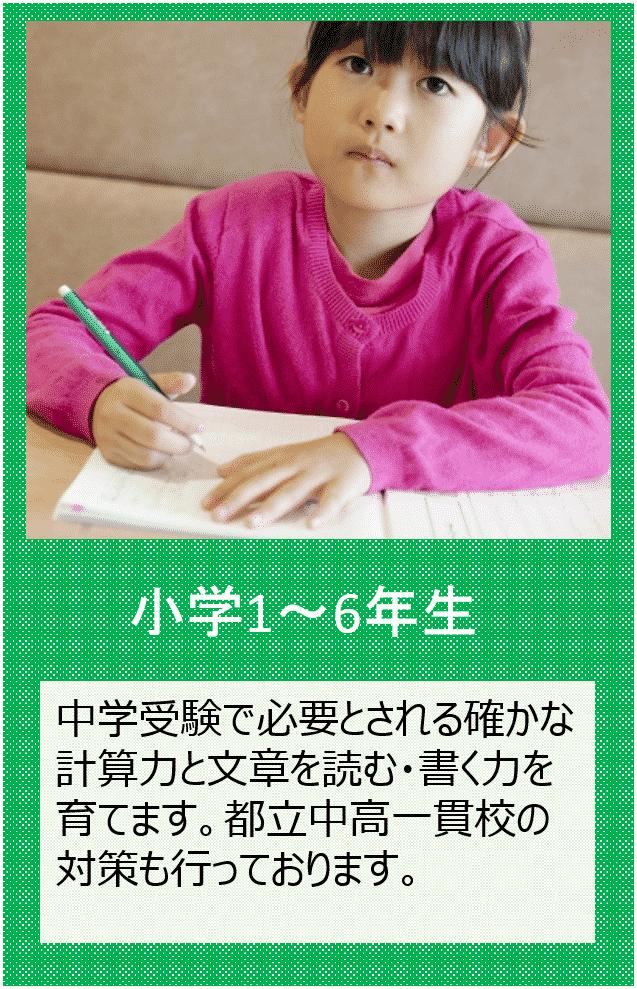 小学1~6年生の個別指導をご希望の方はこちらをクリックしてください。中学受験で必要とされる確かな計算力と文章を読む・書く力を育てます。都立中高一貫校の対策も行っております。